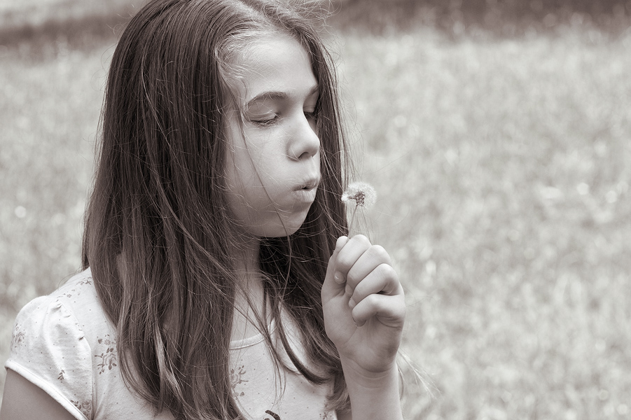 child girl with dandelion copyright © goran kojadinovic